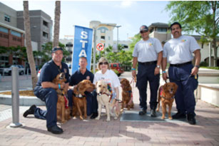 Miami Fire Rescue Dogs ready to start walking