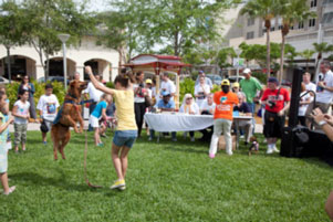 Tryout for Most Talented dog contest