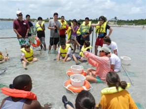 Music Summer Camp students gather on the sandbar to touch the sealife that was captured.